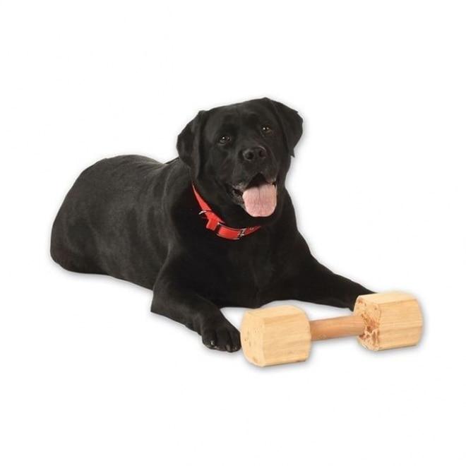 Pro Dog Träapport