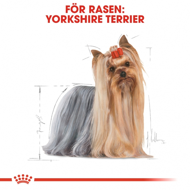 Royal Canin Breed Yorkshire 12x85g
