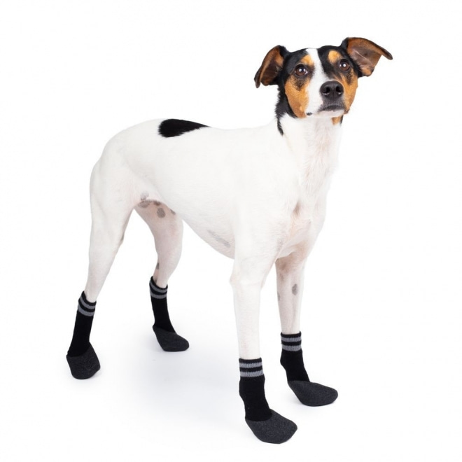 Basic Paws Hundstrumpor Svart 4-pack