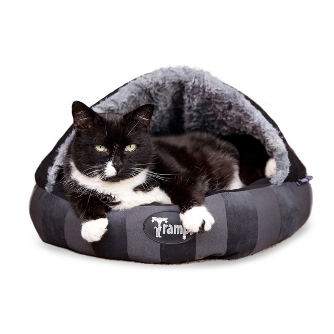 Scruffs Tramps AristoCat Dome bed
