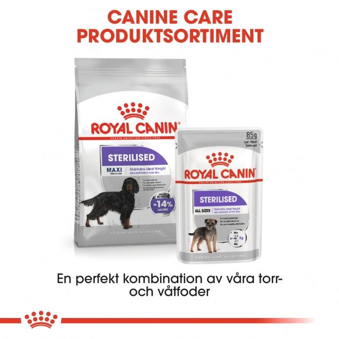 Royal Canin Maxi Sterilised Adult
