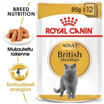 Royal Canin British Shorthair Wet 12 x 85g