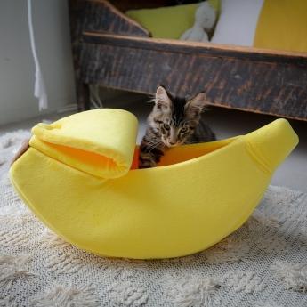 Kissan peti Little&Bigger Banaani