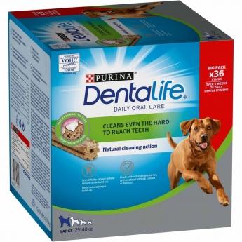 Dentalife Large Big Pack 1272g