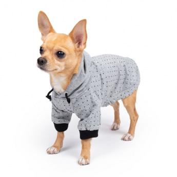 Koiran huppari ItsyBitsy Dot harmaa/musta
