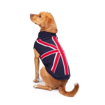 Koiran neule Basic UK sininen