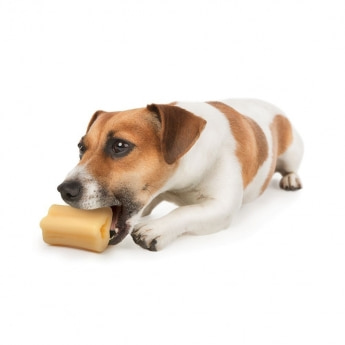 Nylabone Extreme Marrow Bone