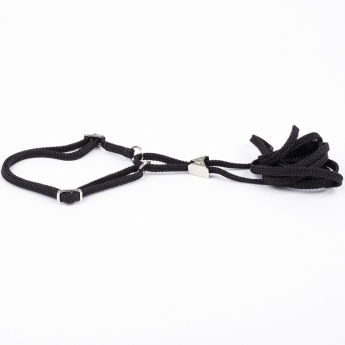 Näyttelyhihna Show Dog pk, musta (5 mm x 120 cm)