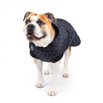 Koiran talvitakki Basic Arctic musta