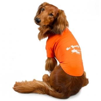 Best Friend Insect Shield koiran T-paita oranssi