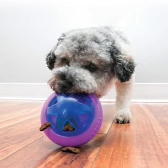 KONG Hopz -koiran aktivointilelu
