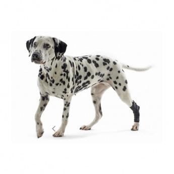 Kinnertuki koiralle Kruuse Rehab