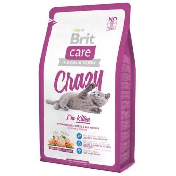 Brit Care Kitten Crazy