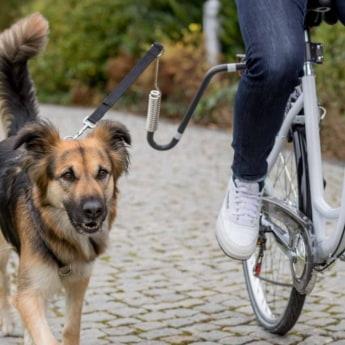 Trixie koiran juoksutin polkupyörään