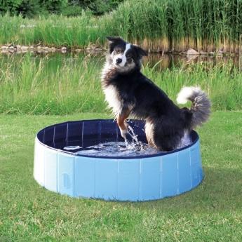 Uima-allas koiralle