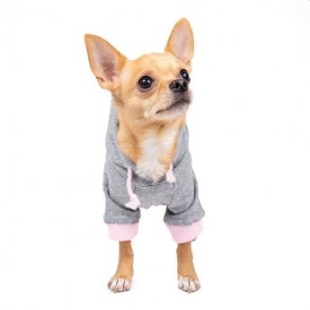 Koiran huppari ItsyBitsy Dot harmaa/roosa