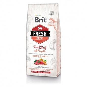 Brit Fresh Beef&Pumpk. PuppyLarge (2,5 kg)
