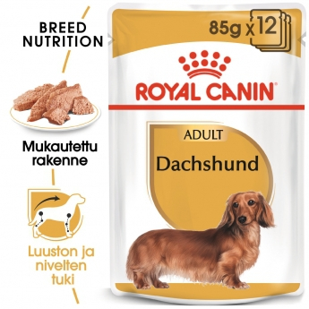 Royal Canin Dachshund  Wet 12x85g