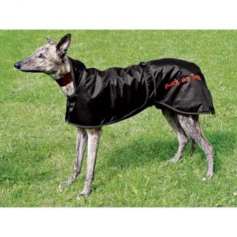 Greyhoundloimi Back on Track