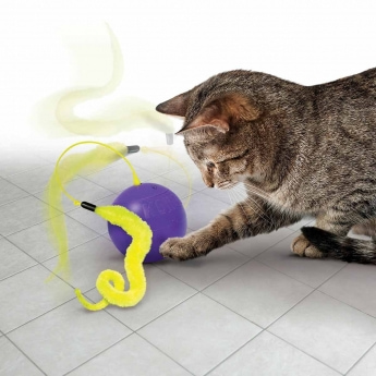 KONG Cat Whirlwind aktivointilelu