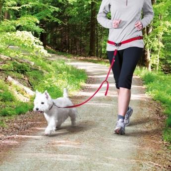 Talutusvyö Trixie S-M koirille, punainen
