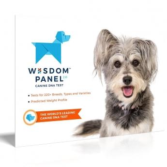 Koiran DNA-testi Wisdom Panel 2.0