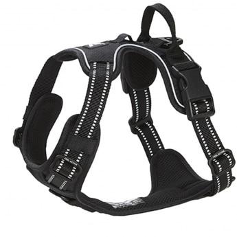 Koiran valjaat FA Training, musta