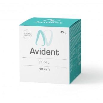 Avital Avident Oral jauhe