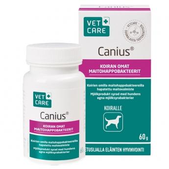 Canius maitohappobakteeriesiseos koirille 60 g