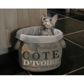 Peti EBI Pet-Bag Coffee Pura Vida