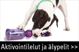 Koiran aktivointilelut ja älypelit