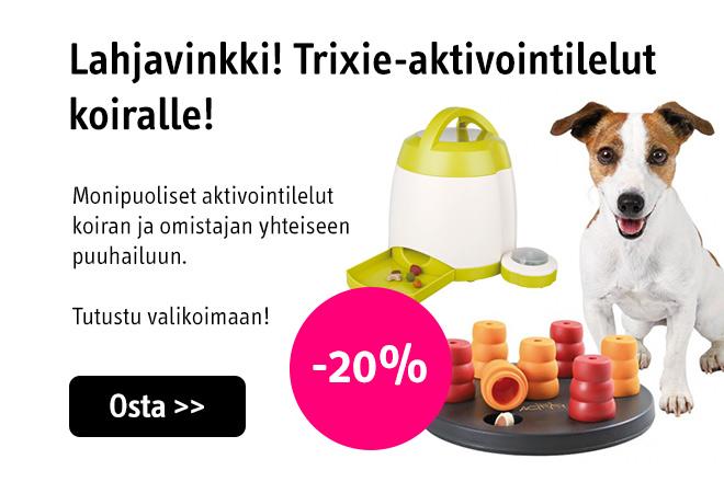 Aktivointilelut koiralle tarjous