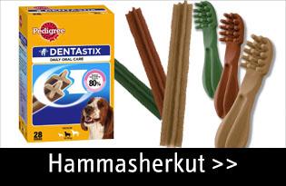 koiran hammasherkut