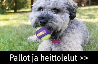 Koiran pallot ja heittolelut