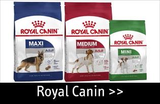 Royal Canin koiran kuivaruoka