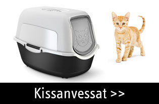 Kissanvessat