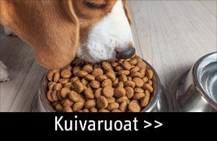 koiran kuivaruoka