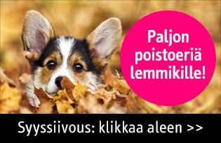 Syyssiivous alennetut tuotteet koiralle