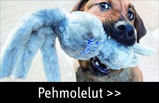 Koiran pehmolelut