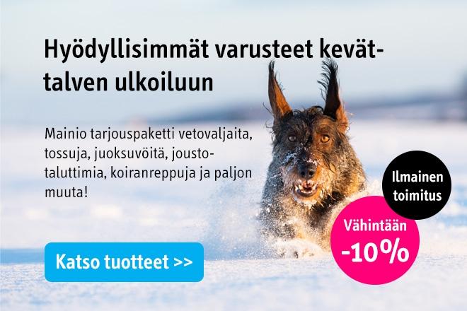 Talvituotteet koirille