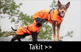 Koiran takit