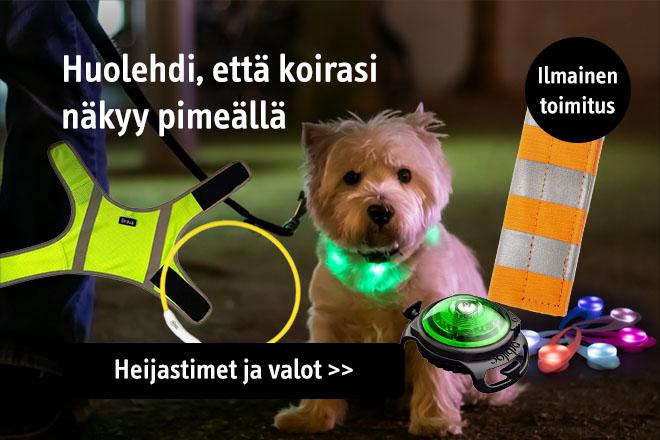 Heijastimet ja valot koirille
