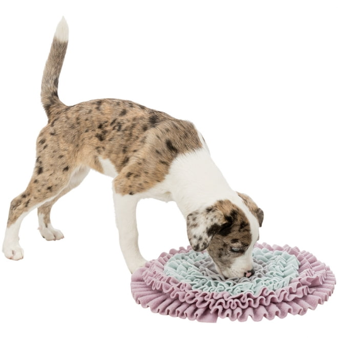 Aktivointimatto Trixie Sniffing Carpet Junior
