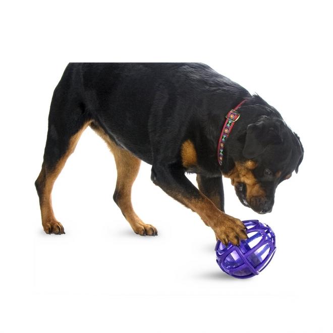 Aktivointilelu Busy Buddy Kibble Nibble Feeder Ball
