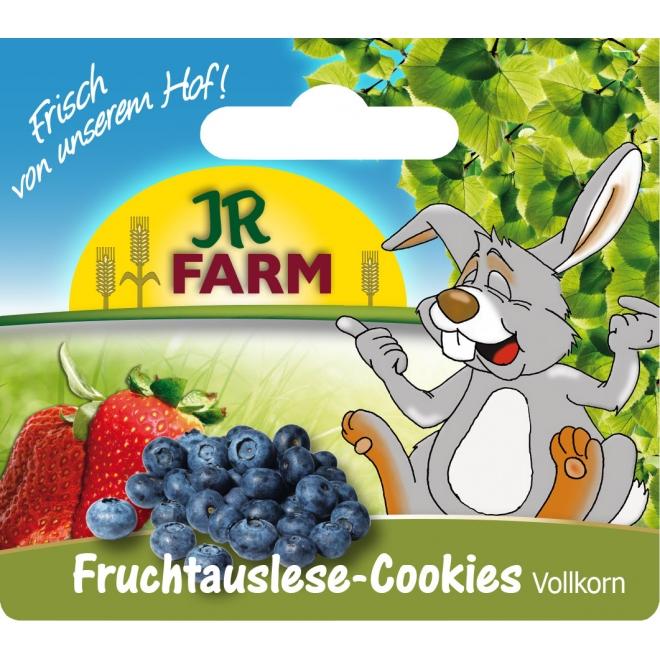 Jr Farm täysjyvä hedelmäkeksit, 80 g