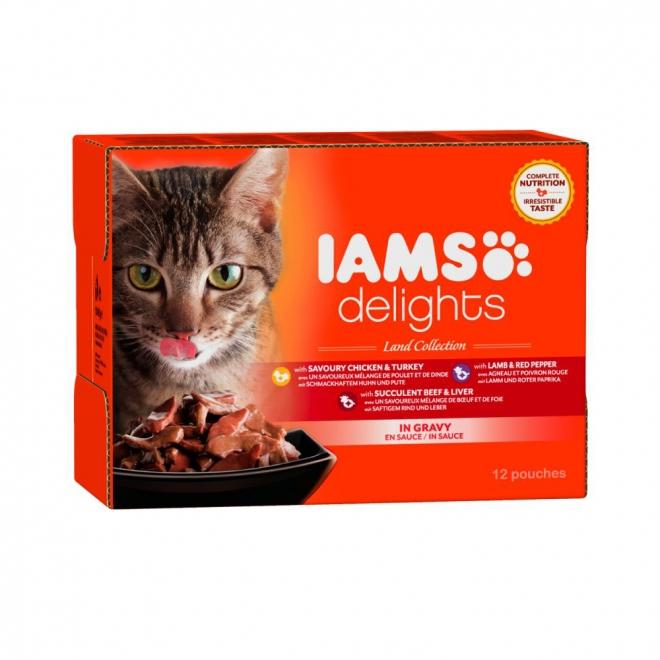 IAMS Delights Gravy Lihalajitelma 12 x 85 g