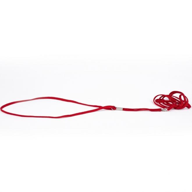 Näyttelyhihna Show Dog pyöreä, punainen (3 mm)
