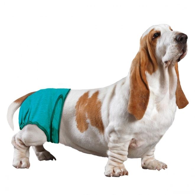 Koiran vaippa SimpleSolution