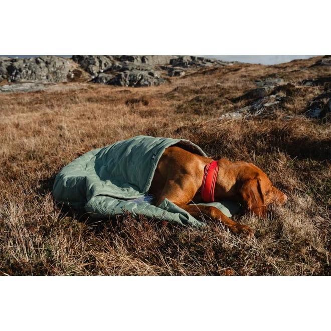 Hurtta Outback Dreamer koiran makuupussi ECO