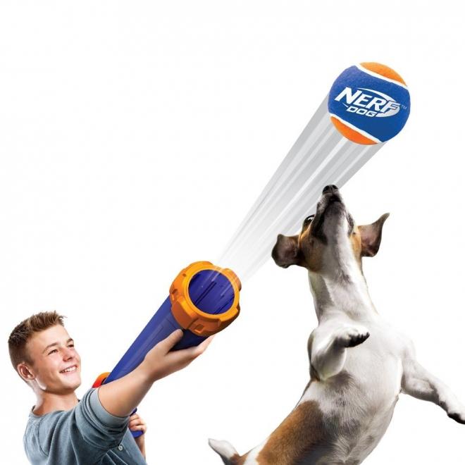 Nerf Dog  Pallotykki